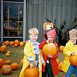 Robinette's Pumpkin Patch