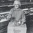 Aleta Brown at Jack Brown Produce