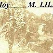Joy Lillie: Nurse Goes to War